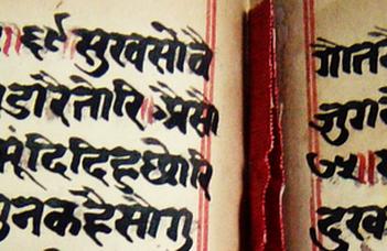 2020-ban online kerül megrendezésre a hetedik nemzetközi bradzs olvasótábor